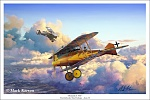 WW1 plane artwork