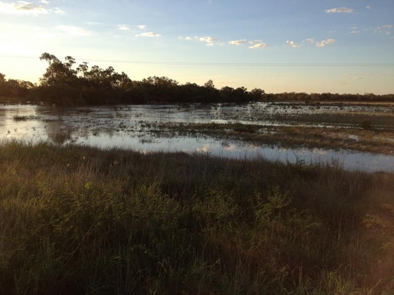 Name:  Flooded paddocks.jpg Views: 64 Size:  164.9 KB
