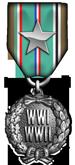 Aerodrome Campaign Medal - Silver